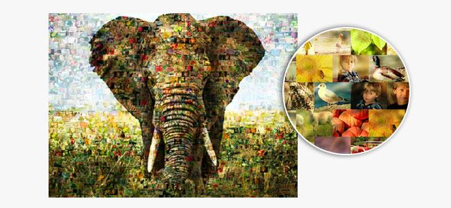 come funziona un foto mosaico_esempio elefante