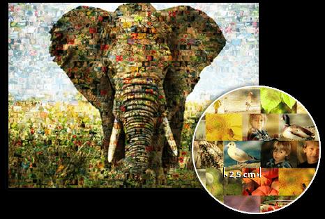 mosaico esempio elefante