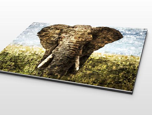 foto alluminio dibond con mosaico_esempio elefante