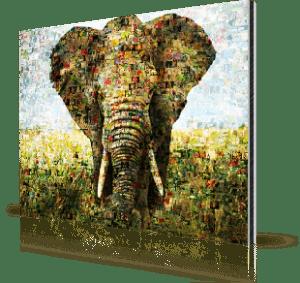 foto mosaico su alluminio_esempio elefante